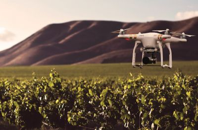 Photo for: 10 Ways the Future of Wine Is Changing Faster Than You Think
