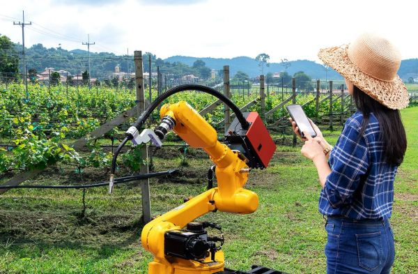 Photo for: 5 Wineries Using Cutting-Edge Technologies