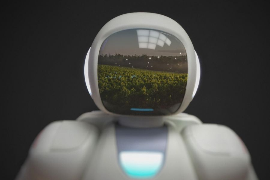 Photo for: How Robots Are Lending A Helping Hand In The Wine Industry